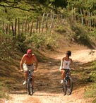 Walking, Cycling at Jakes Resort Jamaica